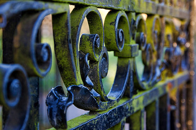 "A weathered gate at the entrance to the ""Avenue"""