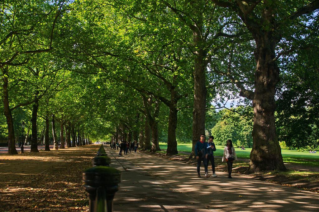 A walk along the Constitution Hill through Green Park