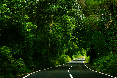 The roads from Loch Lomond to Sterling go through a dense forest