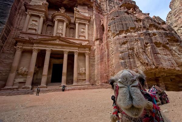 A camel photobomb! @ Al Khazneh - the Treasure Building at Petra